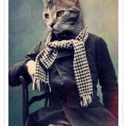 affiche-dart-design-cat-in-scarf-animals